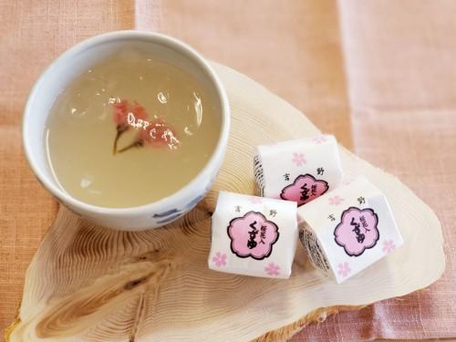 吉野 桜くず湯 6個入 和紙箱