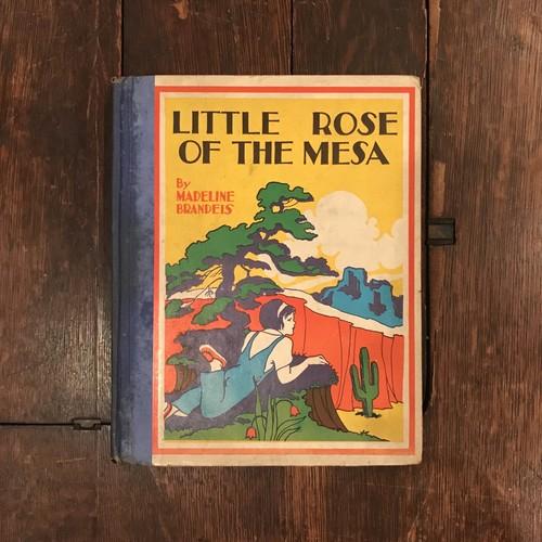 LITTLE ROSE OF THE MESA / Madeline Brandeis