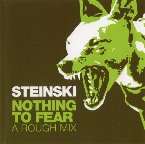 Steinski / Nothing To Fear(A Rough Mix)(CD)