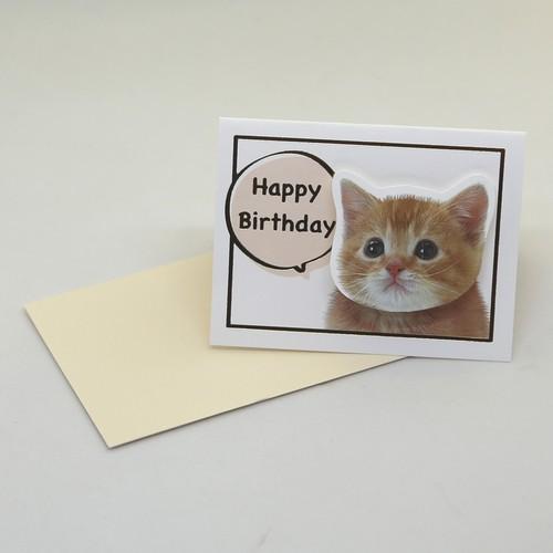 猫立体カード(ゆらゆらHappy Birthdayミニサイズ)