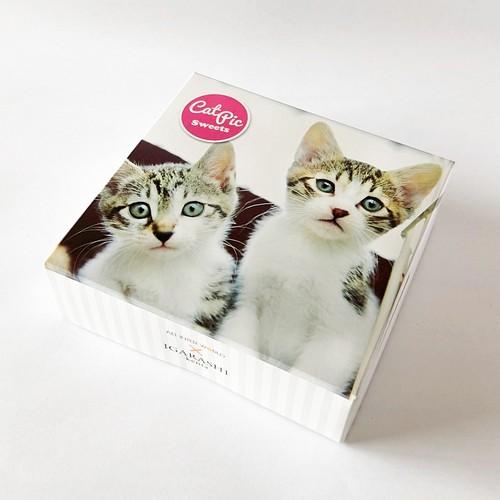 40%OFF CAT PIC 五十嵐さんミックス(クッキー5個入り)いちご味(賞味6/30以降)
