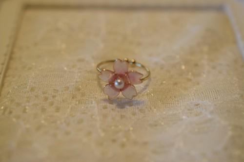 桜のリングその2