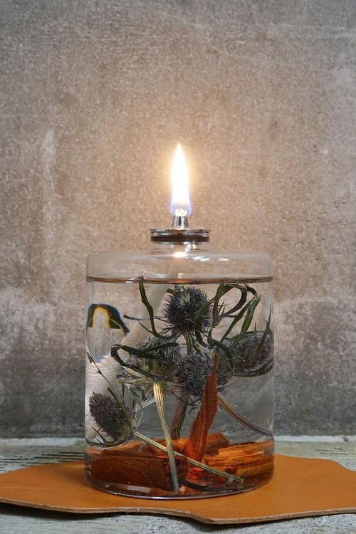 PLANTAHOLIC OIL LAMP -No.9 Eryngium-