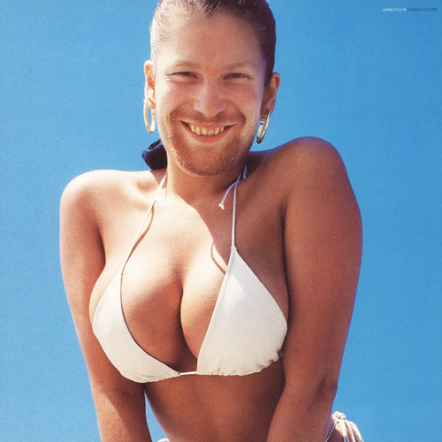 "APHEX TWIN / Windowlicker (12"")"