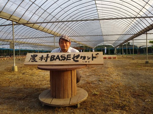 9月毎週火曜日発送限定企画 宮田におまかせ葡萄セット