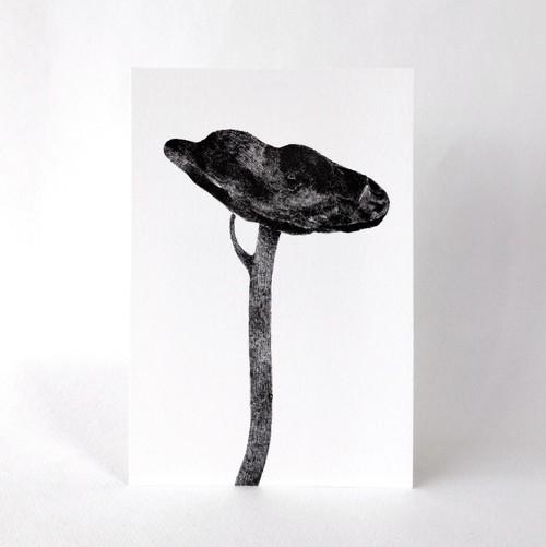 土手で見かける植物のポストカード
