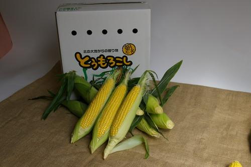 【送料込み 8月中旬よりお届け】江別市 滝農園 味来 8本入り×1箱