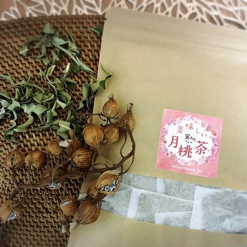 【定期便】美味しい(実入り)月桃茶(ティーパック)葉・種子(実)4g×20包