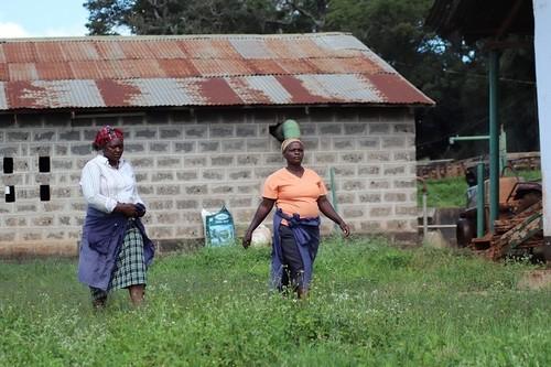 ケニア・キリマラ 100g