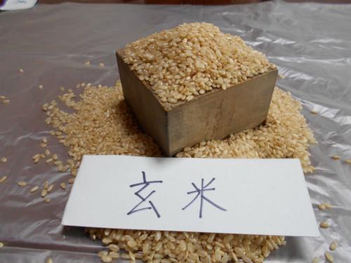 玄米 1kg