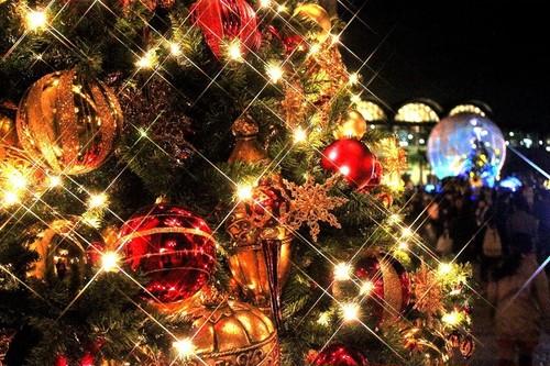 メンバーボイス【クリスマス編】 ※メンバーが選べます。