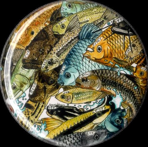 川魚カンバッチ