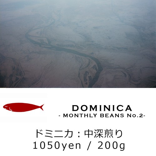 MONTHLY BEANS No.2:DOMINICA - ドミニカ - 中深煎り