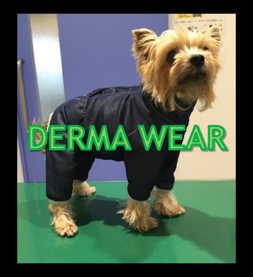 DERMA WEAR 3号(ダーマウェア)