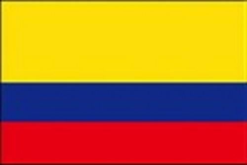 2020年 10月限定 コロンビア 天空のコーヒー 豆 100g