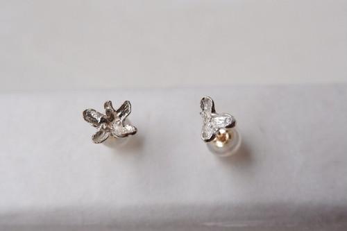 金木犀の花ピアス(シルバー)
