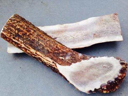 犬用おやつ エゾシカの角ドッグフード 北海道特産「蝦夷ノ鹿角」アウトレット半割大型2本セット deer antler