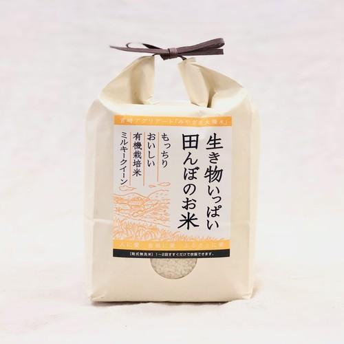 精米2kg  有機ミルキークイーン