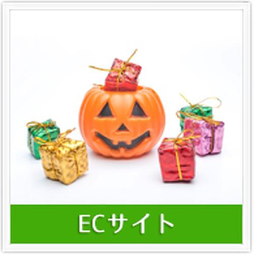 EC制作 商品販売サイト