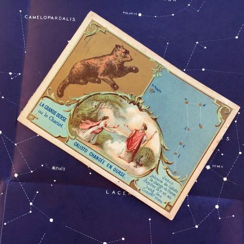おおぐま座の星座カード
