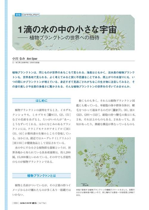 2017年9月発行号/寄稿/小川 なみ 氏