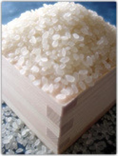 丹波篠山 コシヒカリ (白米)27㎏/袋 <30年度新米 在庫僅少>