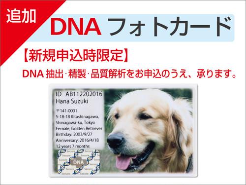 新規申込時限定 追加DNAフォトカード(1枚)
