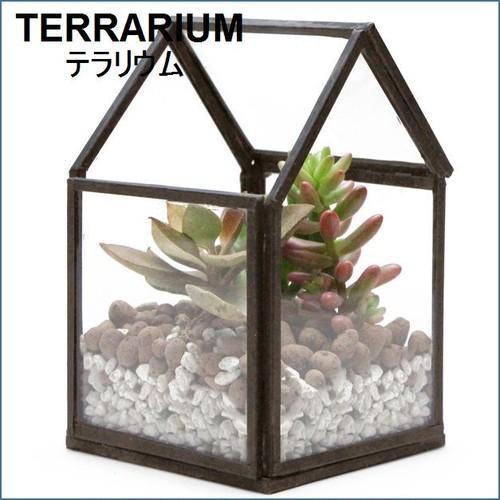 テラリウム用家型ガラスケース S