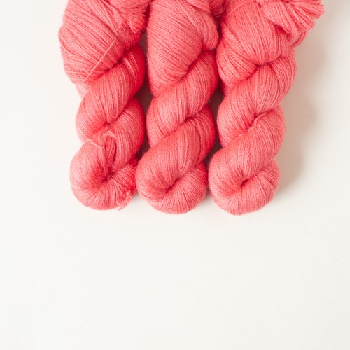 Pink Apple (Bluefaced lace)