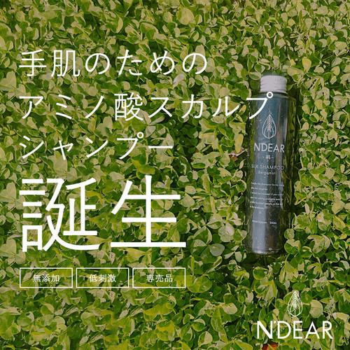 手湿疹 スキンケア発想 の アミノ酸シャンプー N'DEAR 絹 シャンプー