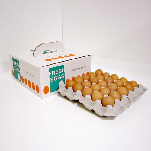 白鳳卵:50個入