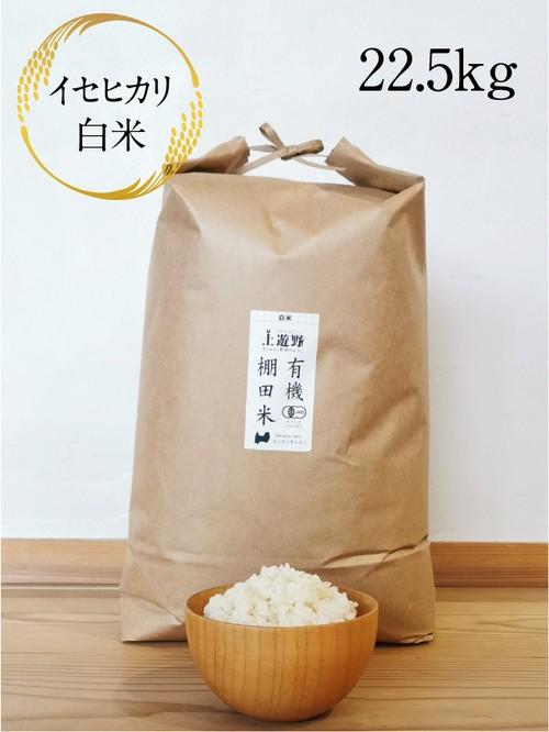 《令和2年産》有機棚田米イセヒカリ 白米 22.5㎏(玄米24㎏分)