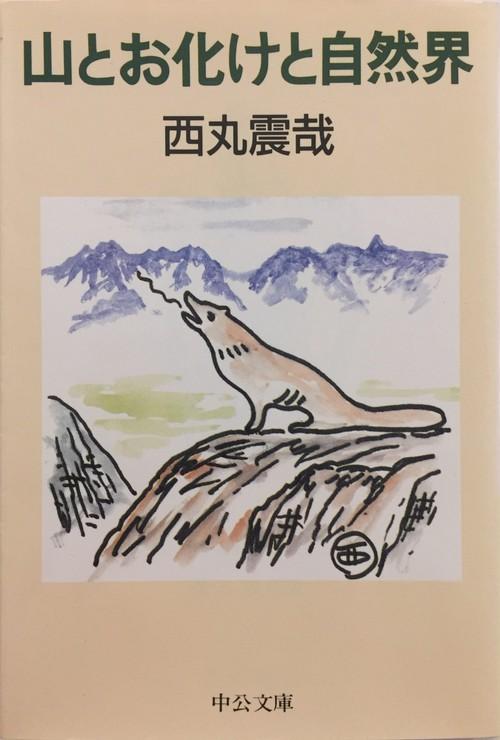 山とお化けと自然界