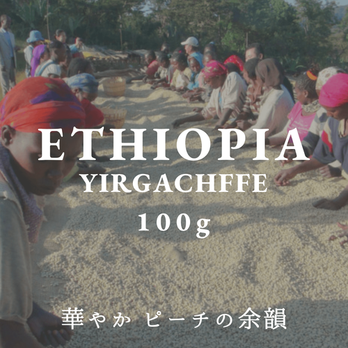 ETHIOPIA|YIRGACHEFFE KONGA|中煎り |コーヒー豆