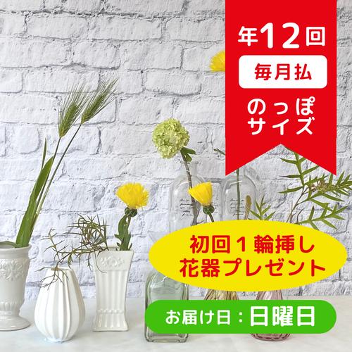 お花の定期便(年12回・毎月払い 日曜日お届けコース)のっぽサイズ