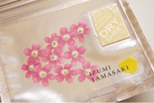 DRY EDIBLE FLOWER[ バーベナ・Light pink ]