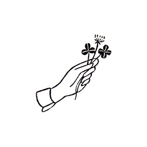 シロツメクサ White clover