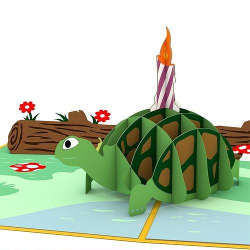 Celebration Turtle