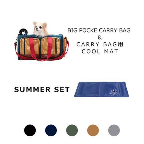 【SUMMER SET】BIG POCKET CARRY BAG&COOL MAT  MANDARINE BROTHERS(マンダリンブラザーズ)