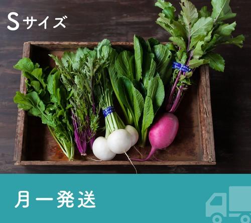 《月一発送》FIO野菜-定期便 Sサイズ