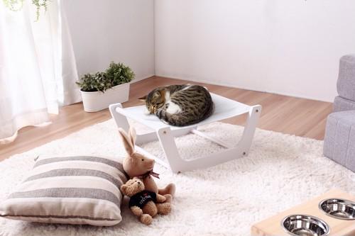 かわいいネコちゃんワンちゃんに安らぎを!!ペット用室内ハンモック