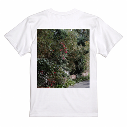 """December, November"" T-shirts ""Pacific Palisades, CA"""