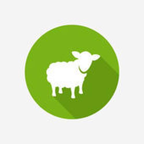 ★羊毛フェルト加工オプション ★いとメモライトmini こどもの絵でファブリックパネル用