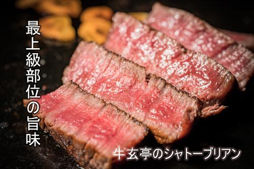 【最上級部位】特選和牛シャトーブリアン ~厚切りステーキカット~ 160g×3枚〈送料無料〉