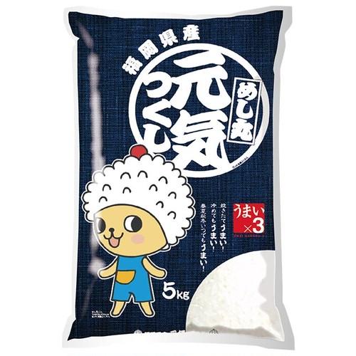 [欠品/新米入荷待ち]福岡県 元気つくし 特別栽培米 5kg 令和元年産 白米/玄米(離島は配送不可)