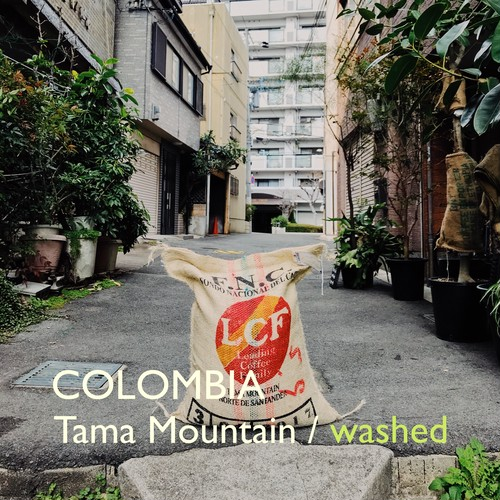 COLOMBIA 【washed】-中深煎- 200g