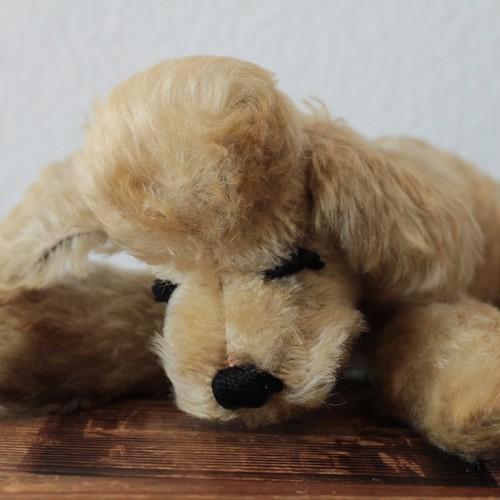 [187]アンティーク シュタイフ 眠り犬Floppy Snobbyプードル 犬/dog 28cm