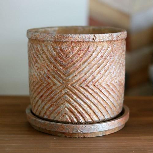 PTMD 鉢
