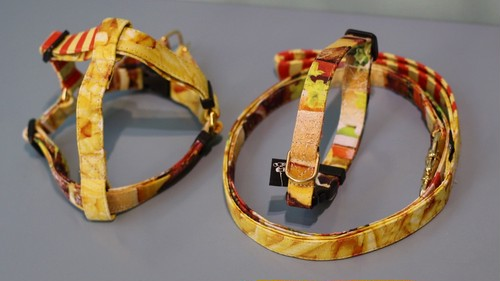 フントヒュッテオリジナル ハーネス&リードセット Sサイズ(テープ幅1.5cm幅)