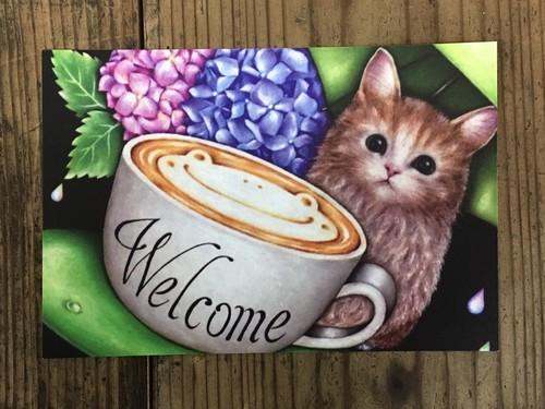 ポストカード 猫(welcome)